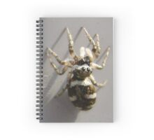 Spiderkin 1 Spiral Notebook
