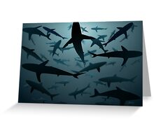 Sharks, Lots and Lots of Sharks Greeting Card