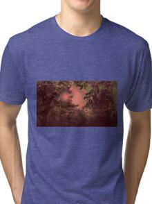 Kashmir Forest Tri-blend T-Shirt