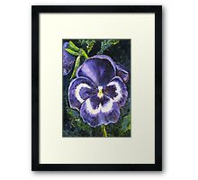 The Giant Purple Pansy Acrylic Painting Framed Print