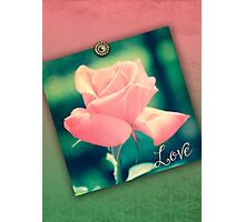 Hybrid Tea Rose Pink Red Vintage Texture Ornamental Pattern Photographic Print