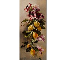 Flowers and Fruit Photographic Print