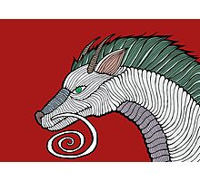 Haku Dragon Doodle Photographic Print