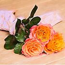 Country Time Orange Roses by daphsam