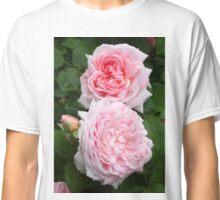 English David Austin Rose - Eglantyne Classic T-Shirt