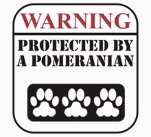 Warning Protected By A Pomeranian Kids Tee