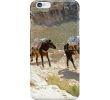 Equine Enterprise iPhone Case/Skin