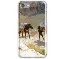 Equine Enterprise iPhone Case/Skin