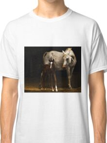 Arabian Mare an Foal Classic T-Shirt