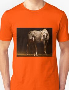 Arabian Mare an Foal Unisex T-Shirt
