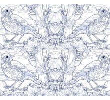 Song Thrush Toile de Jouy Inspired Blue Sticker