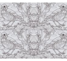 Song Thrush Toile de Jouy Inspired Pale Grey Sticker
