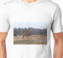 In a storm field Unisex T-Shirt