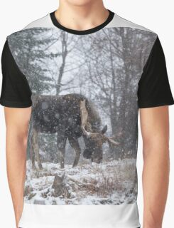 Moose in a snow storm Graphic T-Shirt