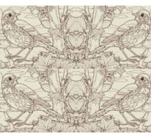Song Thrush Toile de Jouy Inspired Pale Lime Sticker