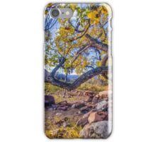 Cottonwood in Moab iPhone Case/Skin