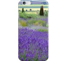 Yorkshire Lavender iPhone Case/Skin