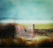 Seaside Serenity by Darlene Lankford Honeycutt