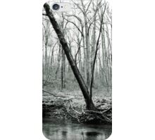 Forest River iPhone Case/Skin