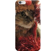 Persephone the red nosed rein-- cat? iPhone Case/Skin