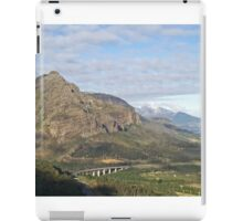 Paarl Valley, South Africa iPad Case/Skin
