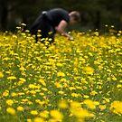 Ingrid in the daisies by KerrieMcSnap