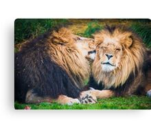 Ooh Yeah, Right There Canvas Print
