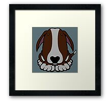 Dobby Ears Bull Terrier Brown  Framed Print