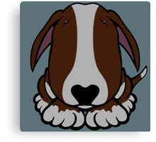 Dobby Ears Bull Terrier Brown  Canvas Print
