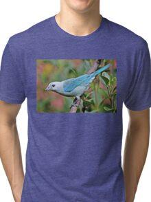 Blue Tanager Tri-blend T-Shirt