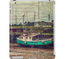 Port Maitland iPad Case/Skin