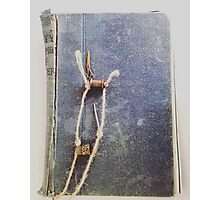 Old Book Photographic Print