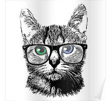 Nerdy Cat Hipster Kitten in Glasses Poster