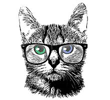 Nerdy Cat Hipster Kitten in Glasses Photographic Print