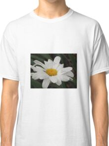 He Loves Me ~ He Loves Me Not  Classic T-Shirt