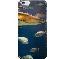 I never go anywhere without my entourage iPhone Case/Skin