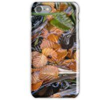 Fagus leaves in a small pool, Hanson's Track, Cradle Mountain,Tasmania. iPhone Case/Skin