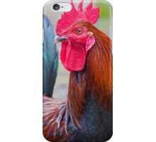 Red Rooster iPhone Case/Skin