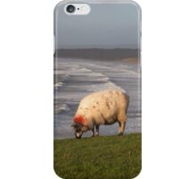 A sheep at Rhossili iPhone Case/Skin