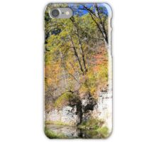 Coldwater Trout Stream iPhone Case/Skin
