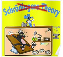 SCHRÖDINGERS THEORY Poster