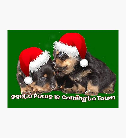 Santa Paws Is Coming To Town Christmas Greeting Photographic Print