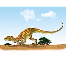 Eoraptor, an early dinosaur that lived during the late Triassic Period. Photographic Print