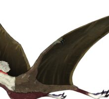 Tapejara, a genus of Brazilian pterosaur from the Cretaceous Period. Sticker