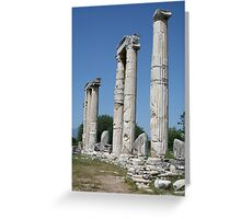 The Temple of Aphrodite -  Ruins of Aphrodisias Turkey Greeting Card