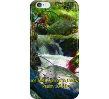 """Psalm 104:10"" Artwork by Carter L. Shepard iPhone Case/Skin"
