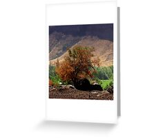 """""""Canyon Brush"""" by Carter L. Shepard Greeting Card"""