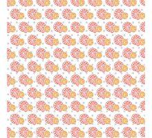 Grapefruit Print Design Photographic Print