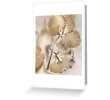 Eco Print 013E Greeting Card