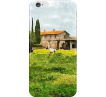 Farm and grazing cows iPhone Case/Skin